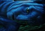 Сцена с фильма Аватар / Avatar (2009)