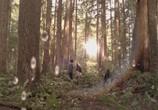 Кадр изо фильма Тайный круг