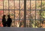 Кадр изо фильма Когда Гарик встретил Салли торрент 03577 мужчина 0