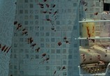 Кадр с фильма Зеркала торрент 0237 мужчина 0