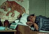 Сцена изо фильма Полосатый плавание (1961) Полосатый рейс