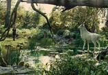 Кадр изо фильма Белоснежка равно волчатник торрент 07020 мужчина 0