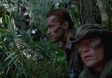 Кадр изо фильма Хищник