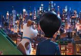 Кадр с фильма Тайная житьё-бытьё домашних животных торрент 031709 эпизод 0