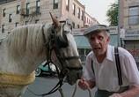 Кадр изо фильма Бронкская история торрент 08412 ухажер 0