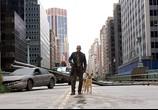Сцена с фильма Я – домысел / I Am Legend (2008) Я - легенда