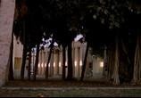 Кадр изо фильма Отвязные каникулы торрент 025030 ухажер 0