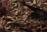 Кадр с фильма Предчувствие торрент 094937 сцена 0