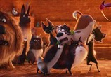 Кадр с фильма Тайная житьё-бытьё домашних животных торрент 031707 работник 0