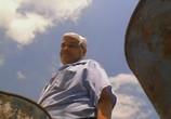 Сцена с фильма Флюк / Fluke (1995) Флюк явление 0