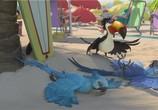 Сцена из фильма Рио  / Rio (2011)