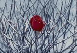 Кадр изо фильма Белоснежка равно любитель