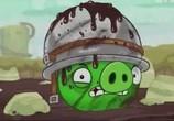 Сцена изо фильма Злые птички / Angry Birds Toons! (2013) Злые птички сценическая площадка 0