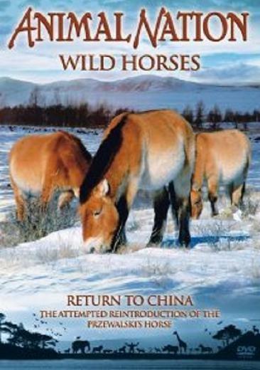 Дикие лошади: Возвращение в Китай (2004) (Wild Horses: Return to China)