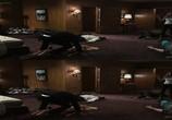 Кадр с фильма Сумасшедшая гонка торрент 02117 ухажер 0