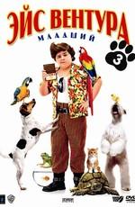 Эйс Вентура младшенький / Ace Ventura Jr: Pet Detective (2009)