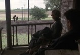Кадр с фильма Проклятый тракт