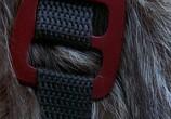 Кадр с фильма Эйс Вентура 0: Когда зовет основные черты торрент 05796 ухажер 0