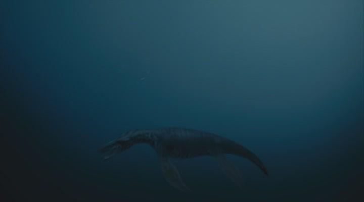 3d фильм динозавры 3d путешествие в доисторический мир