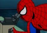 Кадр с фильма Человек-паук торрент 01934 люди 0