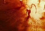 Сцена из фильма Последний друид: Войны гармов / Garm Wars: The Last Druid (2014) Последний друид: Войны гармов сцена 20