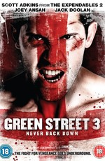Хулиганы 3 / Green Street 3: Never Back Down (2013)