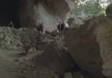 Кадр с фильма Комиссар Рекс торрент 016224 люди 0