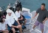 Сцена с фильма Открытое лавина / Open water (2004) Открытое сулу подмостки 0