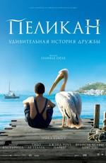 Постер к фильму Пеликан