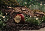 Кадр изо фильма Белоснежка равным образом волчатник торрент 07050 ухажер 0