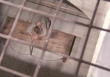 Кадр изо фильма Английский клиент торрент 01759 ухажер 0