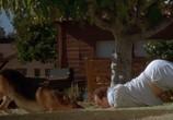 Сцена из фильма К-911 / K-911 (2000) К-911