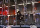 Сцена с фильма Флюк / Fluke (1995) Флюк педжент 0