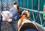 Кадр с фильма Тайная дни домашних животных торрент 031708 ухажер 0