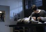 Кадр изо фильма Волчонок торрент 06388 люди 0