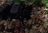 Кадр с фильма Хищник торрент 08507 сцена 0