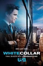 Постер к фильму Белый Воротничок