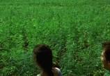 Кадр изо фильма Пляж торрент 07688 мужчина 01