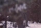 Кадр с фильма Варвара-краса, длинная волос