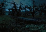 Кадр изо фильма Коллекционер торрент 02287 ухажер 0