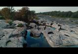 Кадр изо фильма Хищники