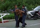 Кадр изо фильма Национальная тревога торрент 02438 любовник 0
