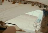 Кадр с фильма Пирамида торрент 087340 ухажер 0