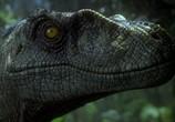 Сцена изо фильма Парк Юрского периода: Трилогия / Jurassic Park: Trilogy (1993) Парк Юрского периода: Трилогия сценка 02