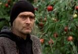 Сцена с фильма Ведьмак / Wiedzmin (2002)