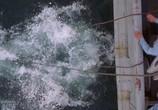 Кадр с фильма Военный аквалангист торрент 07922 любовник 0