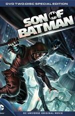Сын Бэтмена / Son of Batman (2014)