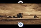Кадр изо фильма V.A.: Uplifting Trance - Trance Emotion торрент 043130 план 0