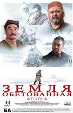 Постер к фильму Земля обетованная