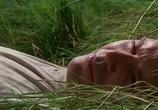 Кадр изо фильма Совершенный подсолнечная торрент 04313 сцена 0